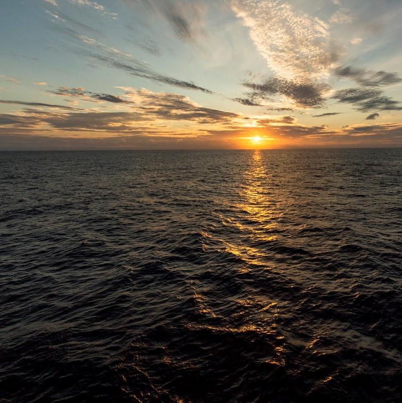 5 raisons d'empêcher l'extraction minière en eaux profondes