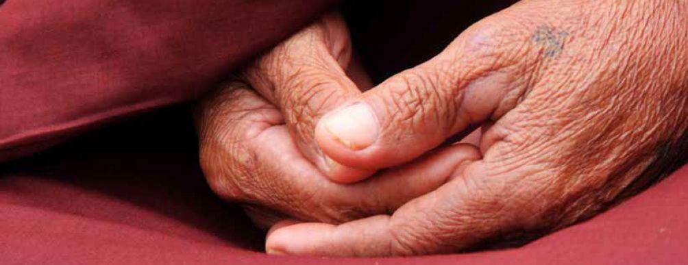 Read more about the article Confiance et discernement, Lama Lhündroup